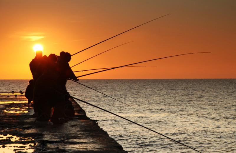 pier fishing guides miami